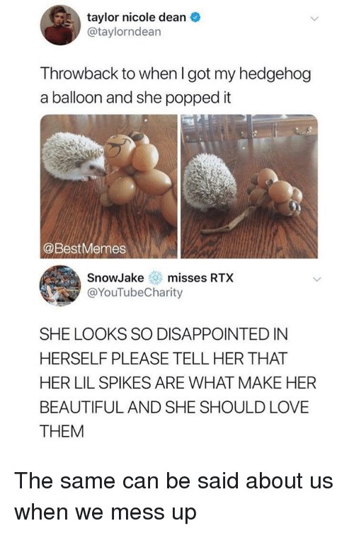 Beautiful, Disappointed, and Love: taylor nicole dean  @taylorndean  Throwback to when I got my hedgehog  a balloon and she popped it  @BestMemes  SnowJakemisses RTX  @YouTubeCharity  SHE LOOKS SO DISAPPOINTED IN  HERSELF PLEASE TELL HER THAT  HER LIL SPIKES ARE WHAT MAKE HER  BEAUTIFUL AND SHE SHOULD LOVE  THEM The same can be said about us when we mess up
