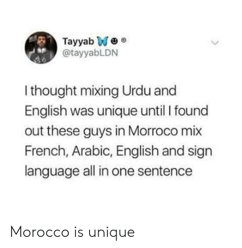 Morocco: Tayyab We  @tayyabLDN  sp  I thought mixing Urdu and  English was unique until I found  out these guys in Morroco mix  French, Arabic, English and sign  language all in one sentence Morocco is unique