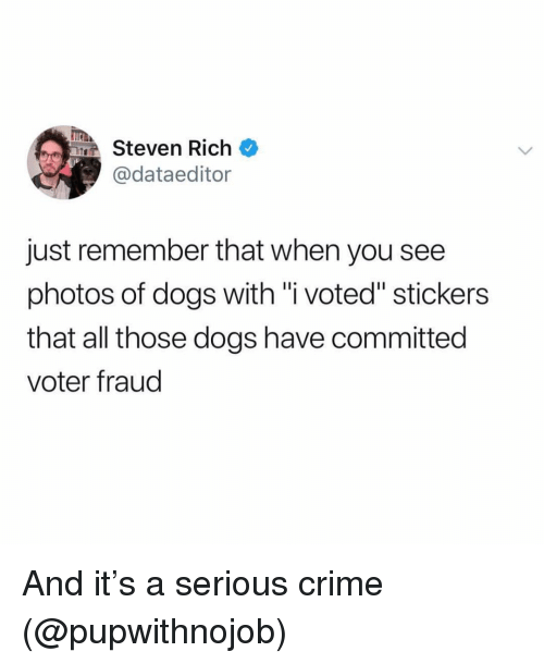 """Crime, Dogs, and Girl Memes: TEA  Steven Rich  @dataeditor  just remember that when you see  photos of dogs with """"i voted"""" stickers  that all those dogs have committed  voter fraud And it's a serious crime (@pupwithnojob)"""