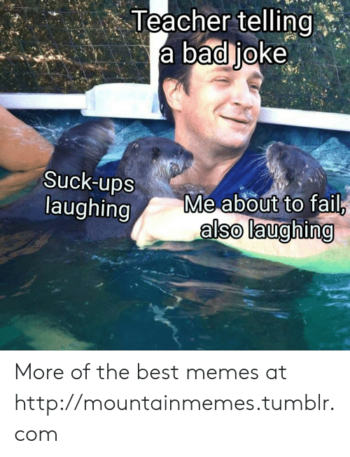 A Bad Joke: Teacher telling  a bad joke  Suck-ups  laughing  Me about to fail,  also laughing More of the best memes at http://mountainmemes.tumblr.com