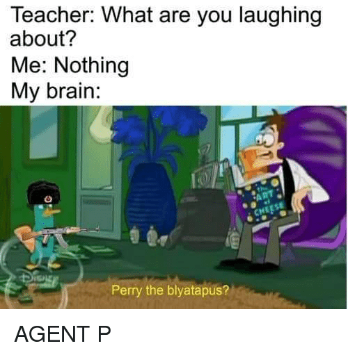 Teacher, Brain, and You: Teacher: What are you laughing  about?  Me: Nothing  My brain:  Perry the blyatapus? AGENT P