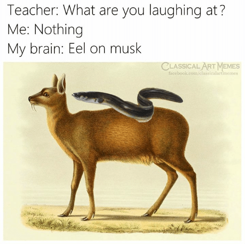 Facebook, Memes, and Teacher: Teacher: What are you laughing at?  Me: Nothing  My brain: Eel on musk  CLASSICALART MEMES  facebook.com/classicalartmemes
