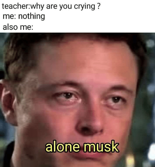 Being Alone, Crying, and Teacher: teacher:why are you crying?  me: nothing  also me:  alone musk