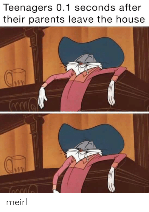 Parents, House, and MeIRL: Teenagers 0.1 seconds after  their parents leave the house meirl