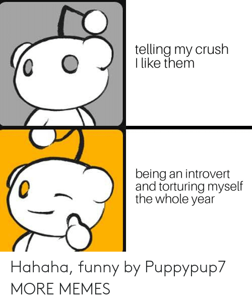 an introvert: telling my crush  I like them  being an introvert  and torturing myself  the whole year Hahaha, funny by Puppypup7 MORE MEMES