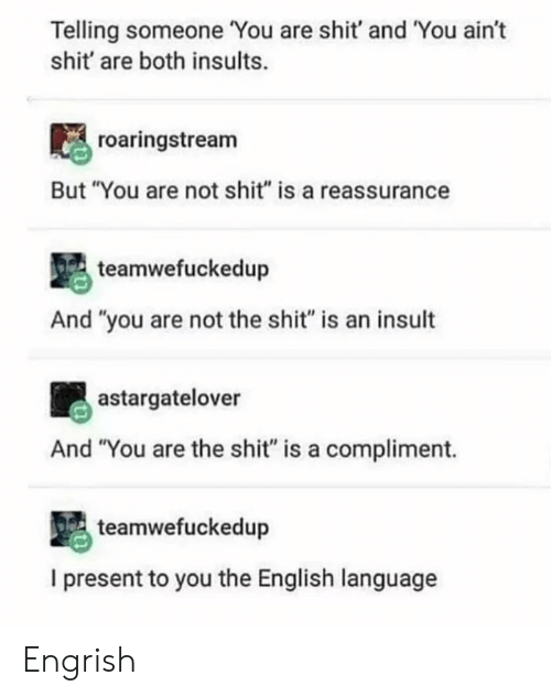"""english language: Telling someone You are shit' and You ain't  shit' are both insults.  roaringstream  But """"You are not shit"""" is a reassurance  teamwefuckedup  And """"you are not the shit"""" is an insult  astargatelover  And """"You are the shit"""" is a compliment.  teamwefuckedup  I present to you the English language Engrish"""