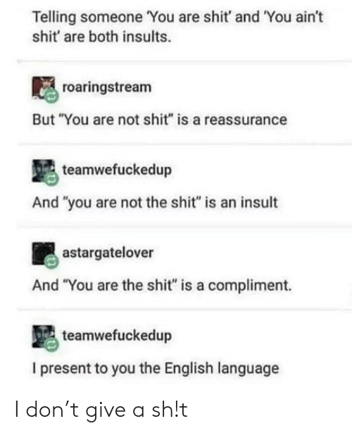 """english language: Telling someone You are shit' and 'You aint  shit are both insults.  roaringstream  But """"You are not shit"""" is a reassurance  teamwefuckedup  And """"you are not the shit"""" is an insult  astargatelover  And """"You are the shit"""" is a compliment.  teamwefuckedup  I present to you the English language I don't give a sh!t"""