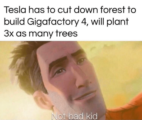 plant: Tesla has to cut down forest to  build Gigafactory 4, will plant  3x as many trees  Not bad kid