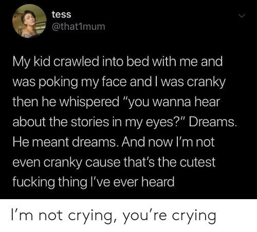 "not crying: tess  @that1mum  My kid crawled into bed with me and  was poking my face and I was cranky  then he whispered ""you wanna hear  about the stories in my eyes?"" Dreams.  He meant dreams. And now l'm not  even cranky cause that's the cutest  fucking thing l've ever heard I'm not crying, you're crying"
