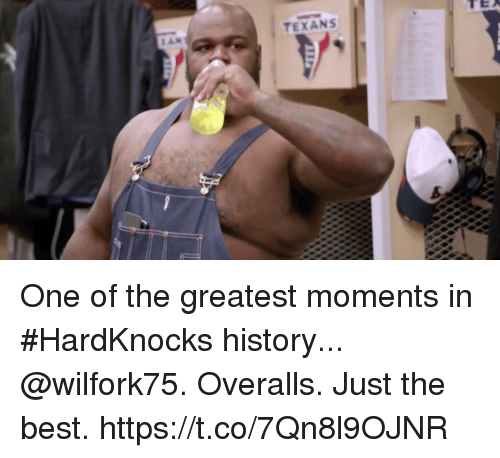 Memes, Best, and History: TEXANS One of the greatest moments in #HardKnocks history...  @wilfork75. Overalls. Just the best. https://t.co/7Qn8l9OJNR