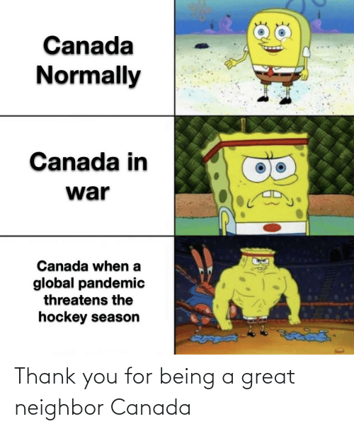 Thank You: Thank you for being a great neighbor Canada