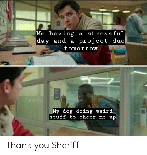 Thank You: Thank you Sheriff