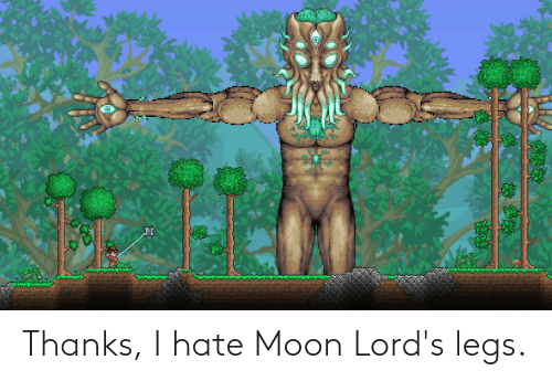 Moon: Thanks, I hate Moon Lord's legs.