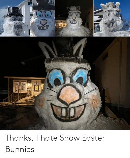 Hate Snow: Thanks, I hate Snow Easter Bunnies