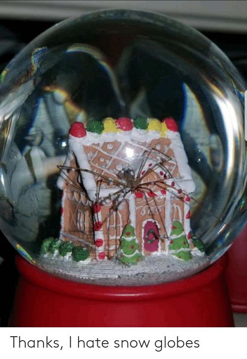 Snow, Hate, and Thanks: Thanks, I hate snow globes