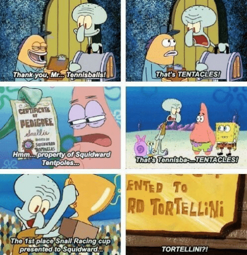 Squidward, Pro, and Hmm: Thanksyou, Mr... Tennisballs!  That's TENTACLES!  CERTIFHCAE  PEDIGREE  emais  uldwardT  9  That s Tennisbas TENTACLES  Hmm...pro  Tentpoles  ENTED To  RD TORTE LLiNi  The 1stplaco Snall Racing cup  presentod to Squidward  TORTELLINI?!
