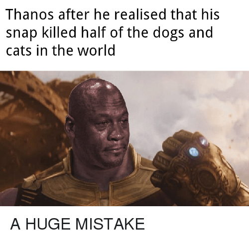 Cats, Dogs, and Thanos: Thanos after he realised that his  snap killed half of the dogs and  cats in the worlo A HUGE MISTAKE