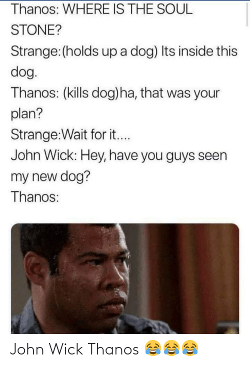 soul: Thanos: WHERE IS THE SOUL  STONE?  Strange:(holds up a dog) Its inside this  dog.  Thanos: (kills dog)ha, that was your  plan?  Strange:Wait for it...  John Wick: Hey, have you guys seen  my new dog?  Thanos: John Wick Thanos 😂😂😂