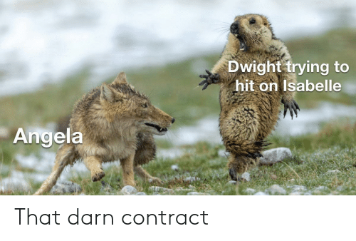 The Office: That darn contract