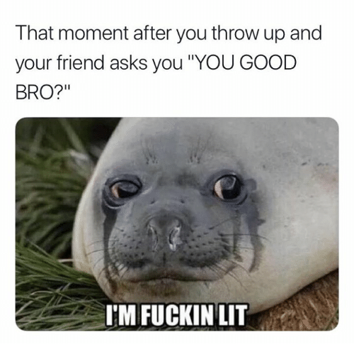 "Lit, Good, and Throw Up: That moment after you throw up and  your friend asks you ""YOU GOOD  BRO?""  I'M FUCKIN LIT"
