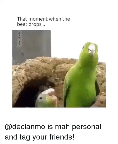 Friends, Funny, and Beats: That moment when the  beat drops... @declanmo is mah personal and tag your friends!