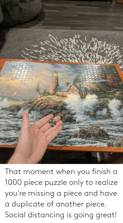 that moment when you: That moment when you finish a 1000 piece puzzle only to realize you're missing a piece and have a duplicate of another piece. Social distancing is going great!