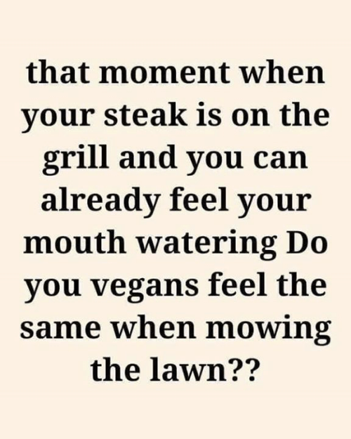 that moment when: that moment when  your steak is on the  grill and you can  already feel your  mouth watering Do  you vegans feel the  same when mowing  the lawn??