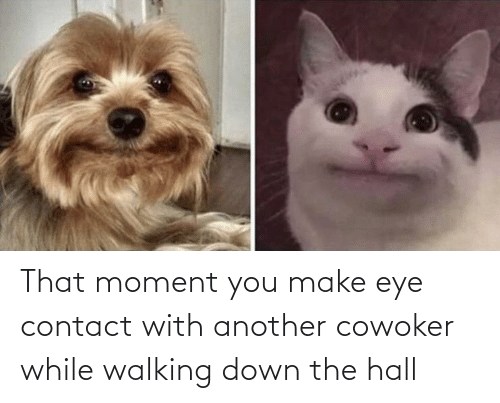 walking: That moment you make eye contact with another cowoker while walking down the hall