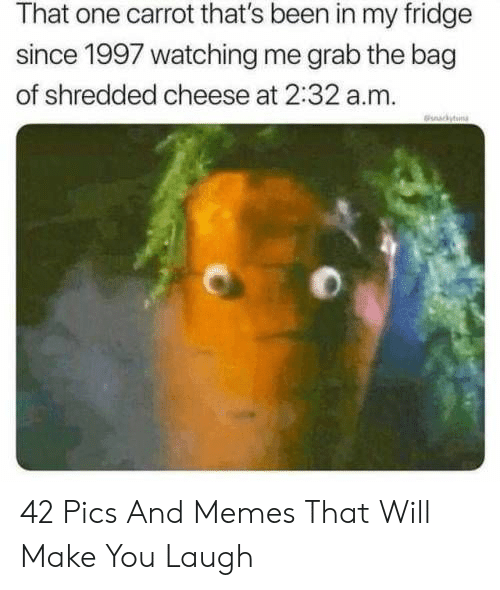 Shredded Cheese: That one carrot that's been in my fridge  since 1997 watching me grab the bag  of shredded cheese at 2:32 a.m.  ckyn 42 Pics And Memes That Will Make You Laugh