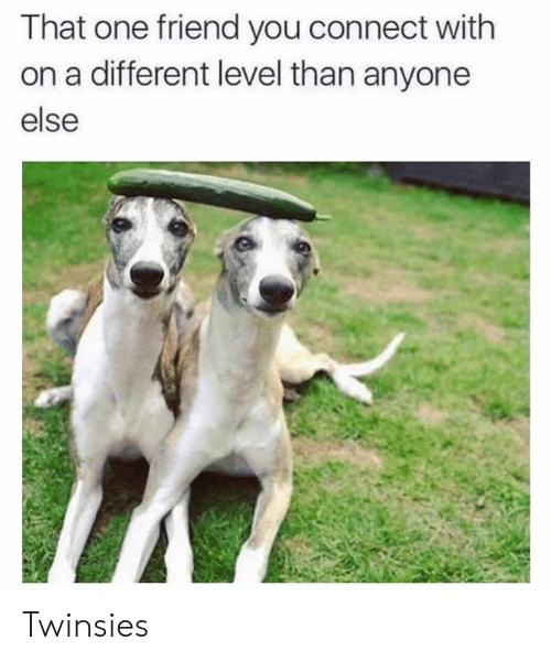 Dank, 🤖, and One: That one friend you connect with  on a different level than anyone  else Twinsies