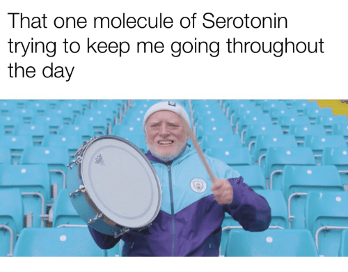 Serotonin, One, and Day: That one molecule of Serotonin  trying to keep me going throughout  the day