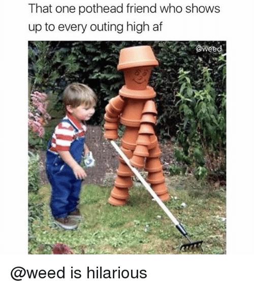 Af, Weed, and High AF: That one pothead friend who shows  up to every outing high af  @weed @weed is hilarious
