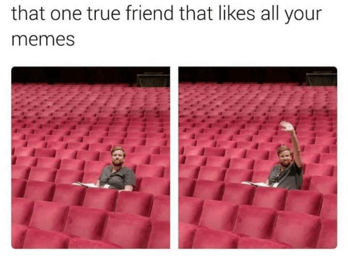 One True: that one true friend that likes all your  memes