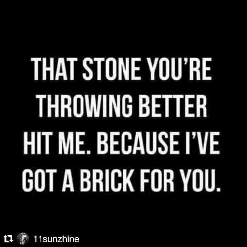 brick: THAT STONE YOU'RE  THROWING BETTER  HIT ME. BECAUSE I'VE  GOT A BRICK FOR YOU.  11sunzhine