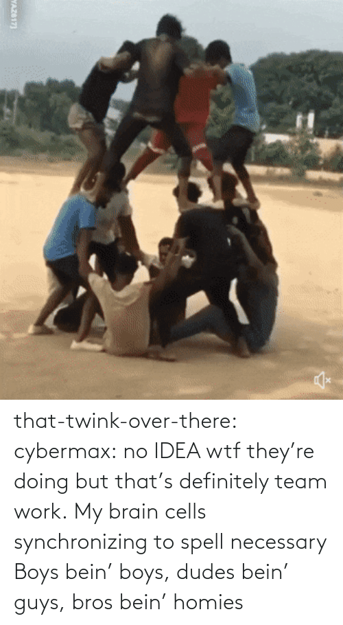 Thats: that-twink-over-there: cybermax: no IDEA wtf they're doing but that's definitely team work.   My brain cells synchronizing to spell necessary    Boys bein' boys, dudes bein' guys, bros bein' homies