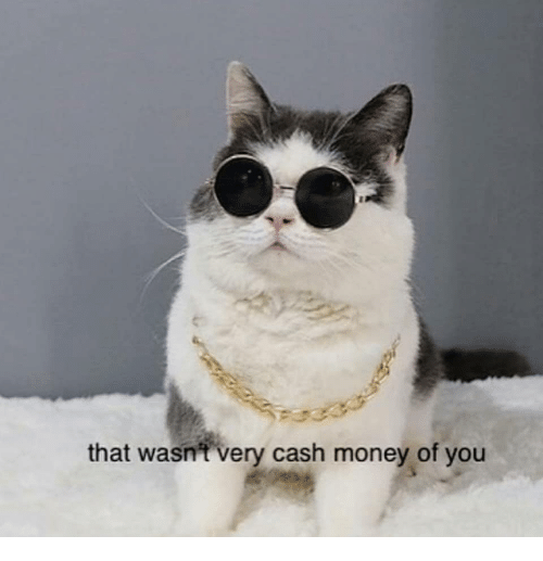 that-wasnt-very-cash-money-of-you-36858883.png