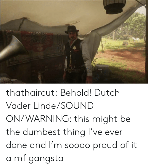 vader: thathaircut:  Behold! Dutch Vader Linde/SOUND ON/WARNING: this might be the dumbest thing I've ever done and I'm soooo proud of it  a mf gangsta