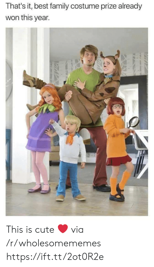 Cute, Family, and Best: That's it, best family costume prize already  won this year. This is cute ❤ via /r/wholesomememes https://ift.tt/2ot0R2e