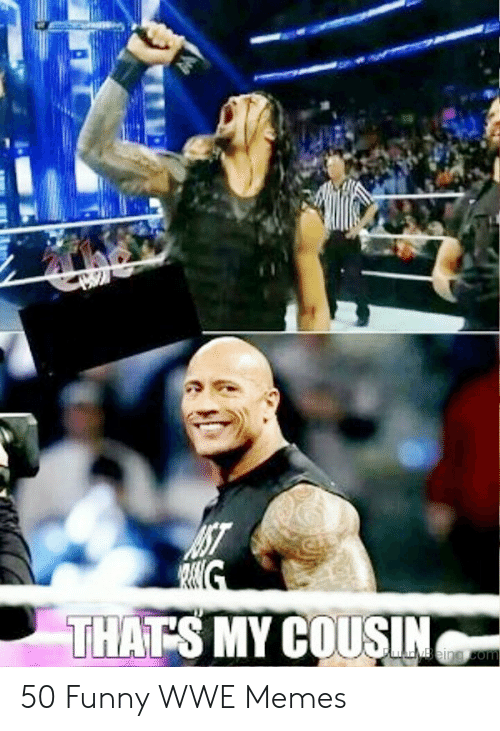 Wwe Memes 2017: THATS MY COUSIN 50 Funny WWE Memes