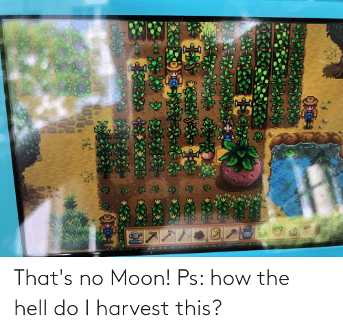 Moon: That's no Moon! Ps: how the hell do I harvest this?