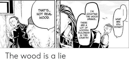 You, Real, and Lie: THAT'S...  NOT REAL  WOOD  IM  COUNTING  THE WOOD  GRAINS...  WHAT  ARE  YOU  DOING?  THERE  ARE A  LOT OF  WOODEN  BUILDINGS  IN THIS  COUNTRY The wood is a lie
