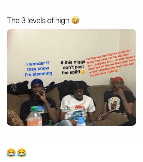 Low Key, Weed, and Marijuana: The 3 levels of high  snigga I'm low key too high to function t  hit I have  m smizzed  they know  I'm steaming the spliff  skip  hope  don't  bro..*  me sir the me there two me's  inner n deadass my own  past bro  , deadas  or am I deadass my own twin and  my twin is a triplet 😂😂