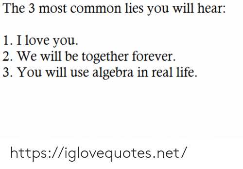 Life, Love, and I Love You: The 3 most common lies you will hear  1. I love you  2. We will be together forever  3. You will use algebra in real life. https://iglovequotes.net/