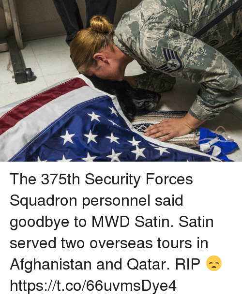 Goodbyee: The 375th Security Forces Squadron personnel said goodbye to MWD Satin. Satin served two overseas tours in Afghanistan and Qatar. RIP 😞 https://t.co/66uvmsDye4