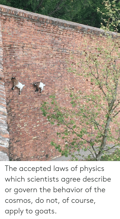 Physics, Accepted, and Cosmos: The accepted laws of physics which scientists agree describe or govern the behavior of the cosmos, do not, of course, apply to goats.