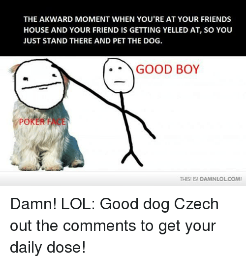 Friends, Lol, and Memes: THE AKWARD MOMENT WHEN YOU'RE AT YOUR FRIENDS  HOUSE AND YOUR FRIEND IS GETTING YELLED AT, SO YOU  JUST STAND THERE AND PET THE DOG.  GOOD BOY  POKE  THIS! ISI DAMNLOLCOM! Damn! LOL: Good dog