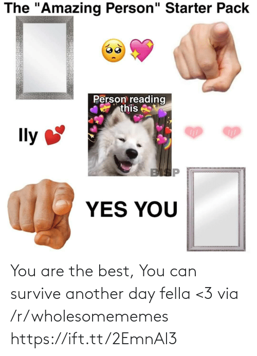 "R Wholesomememes: The ""Amazing Person"" Starter Pack  Person reading  this  Ily  BISP  YES YOU You are the best, You can survive another day fella <3 via /r/wholesomememes https://ift.tt/2EmnAl3"