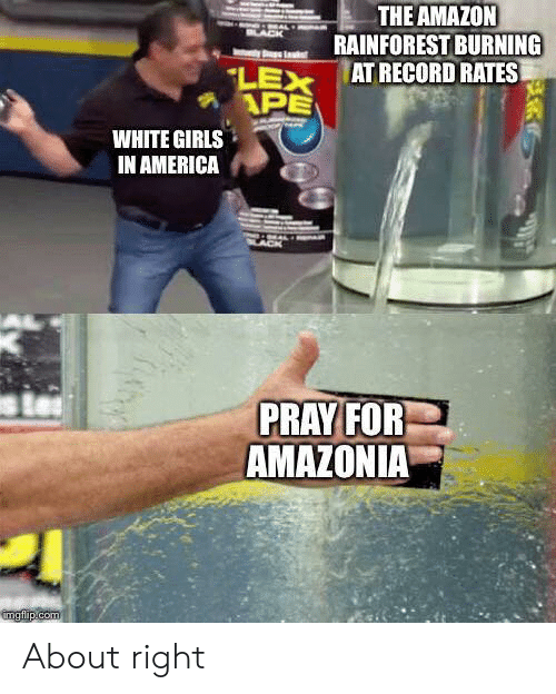 Lex: THE AMAZON  RAINFOREST BURNING  AT RECORD RATES  LACK  LEX  APE  WHITE GIRLS  IN AMERICA  PRAY FOR  AMAZONIA  imgflip.com About right