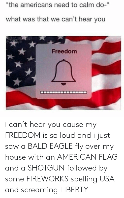 """My House, Saw, and American: """"the americans need to calm do-""""  what was that we can't hear you  Freedom i can't hear you cause my FREEDOM is so loud and i just saw a BALD EAGLE fly over my house with an AMERICAN FLAG and a SHOTGUN followed by some FIREWORKS spelling USA and screaming LIBERTY"""