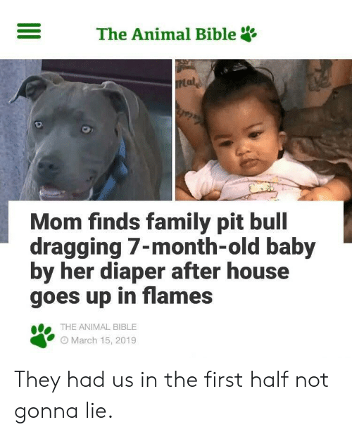 Family, Animal, and Bible: The Animal Bible  Mom finds family pit bull  dragging 7-month-old baby  by her diaper after house  goes up in flames  THE ANIMAL BIBLE  O March 15, 2019 They had us in the first half not gonna lie.
